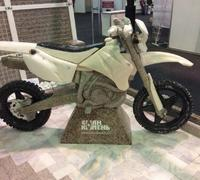 expo-201601-krsk-04-moto