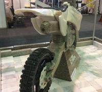 expo-201601-krsk-09-moto